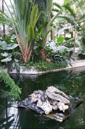 Tropical garden at Atocha Station