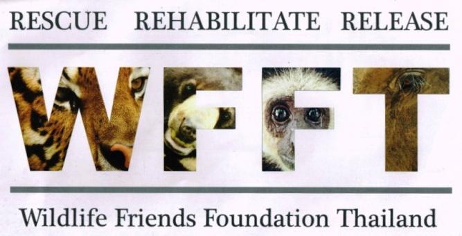 WFFT Logo